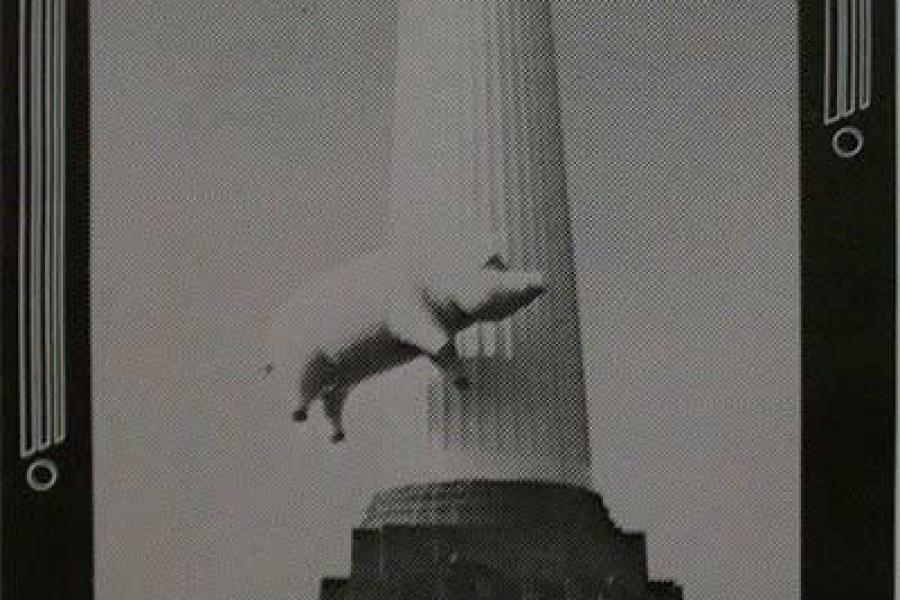 Pink Floyd 9.5.1977 Oakland Poster