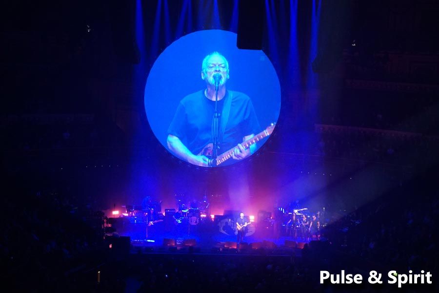 David Gilmour 24.4.2016 London Teenage Cancer Trust