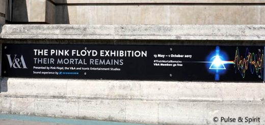 Their Mortal Remains Exhibition