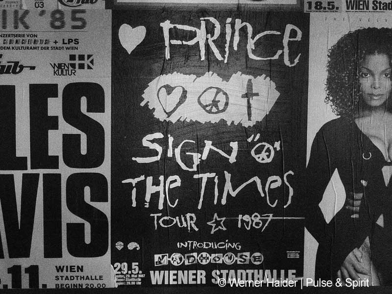 Prince 7.6.2014 Wien Stadthalle