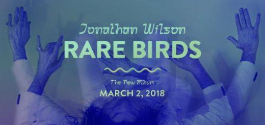 Jonathan Wilson - Rare Birds